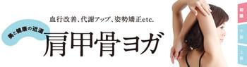 Vol24_kenkokotsu_title